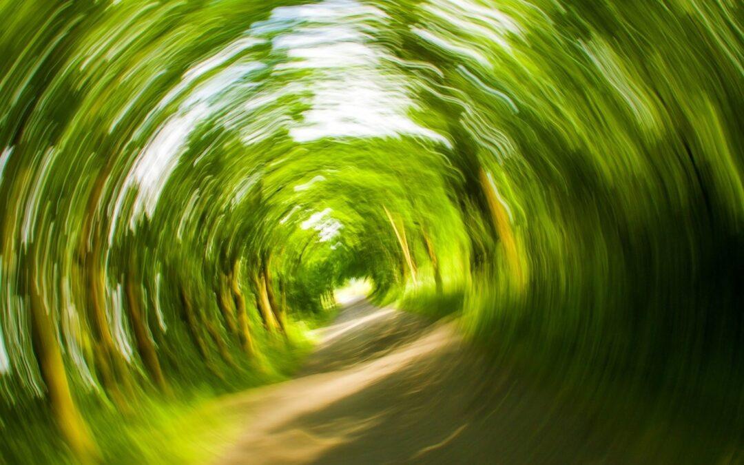 What Causes Vertigo, Imbalance & Dizziness?