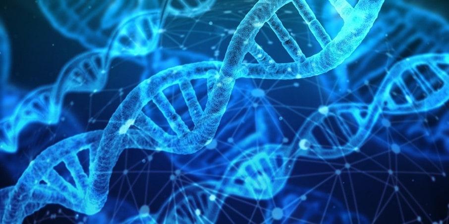Is Hearing Loss Genetic?